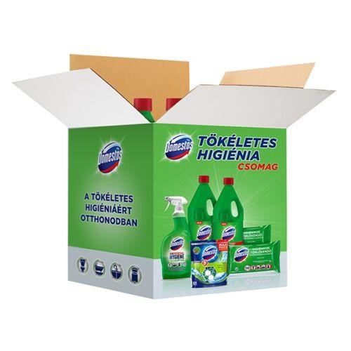 Higiéniai csomag DOMESTOS Pine 6 termék